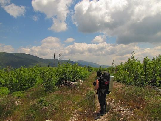 Kolesárová - spojrzenie w kierunku Kráľovej hoľi.