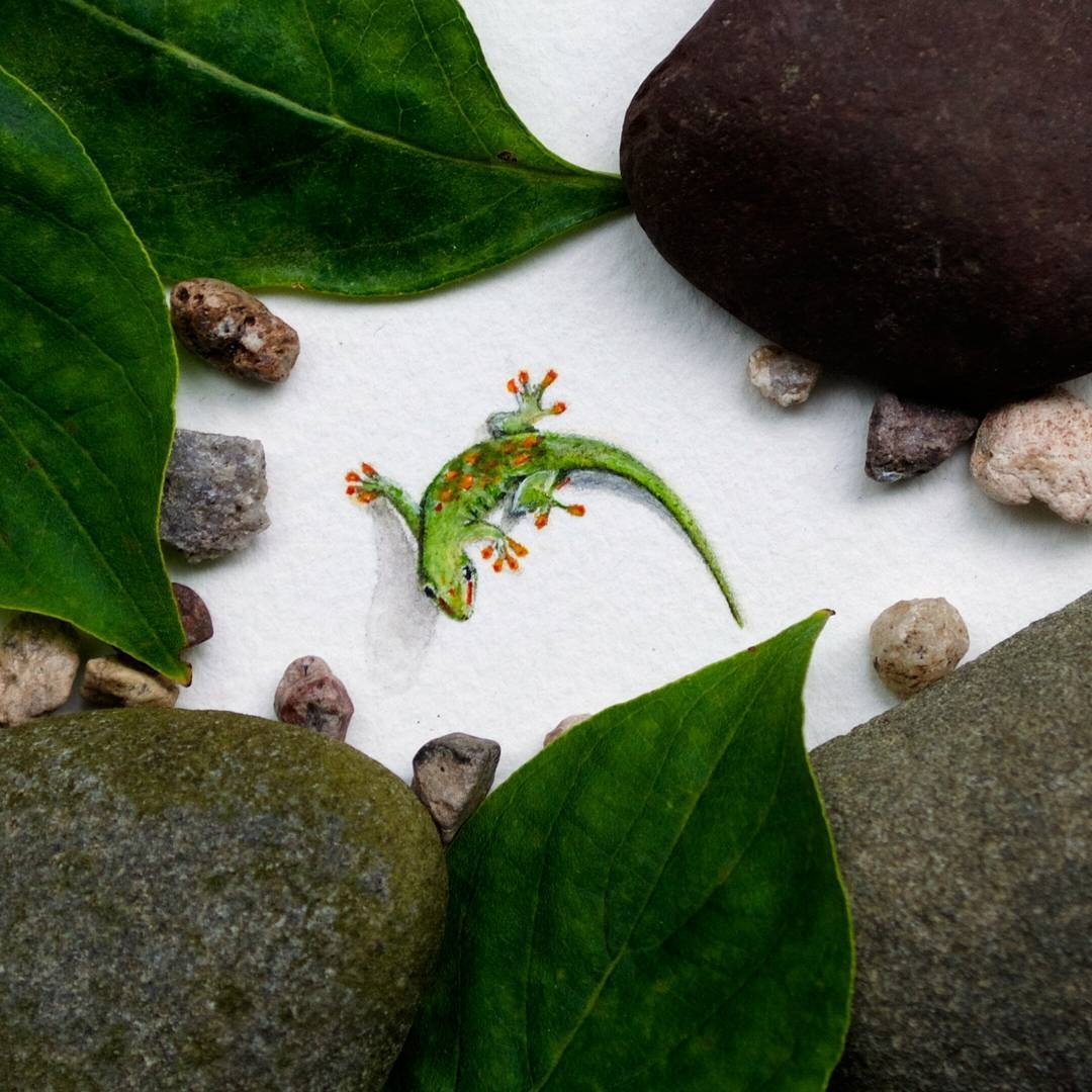 09-Gecko-Rachel-Beltz-Creative-Miniature-Paintings-www-designstack-co