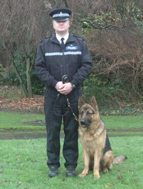 German Shepherds Police Dogs | Dog German Shepherds