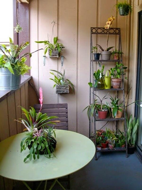 Decorar con orqu deas guia de jardin - Flores artificiales maison du monde ...