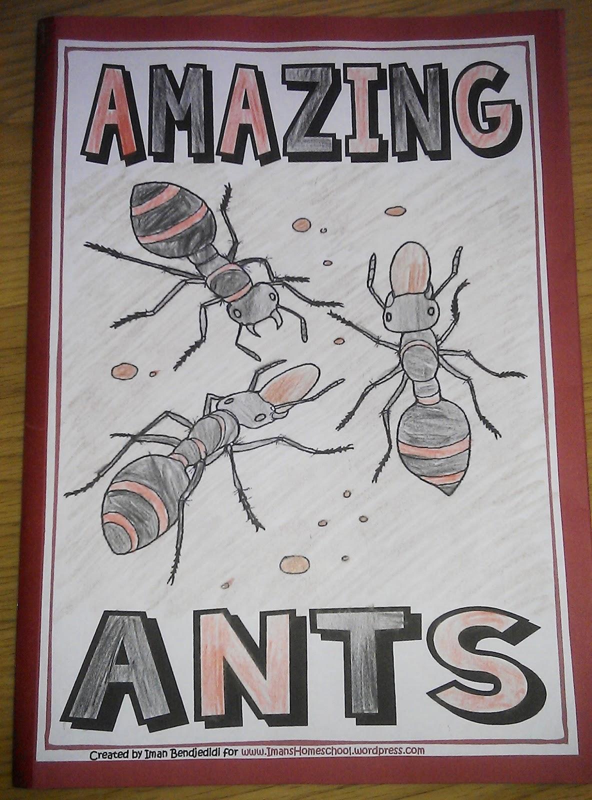 Iman S Home School Ants Unit Study