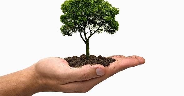 Artigo sobre licenciamento ambiental