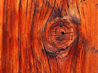 cara-mewarnai-kayu-alami.jpg