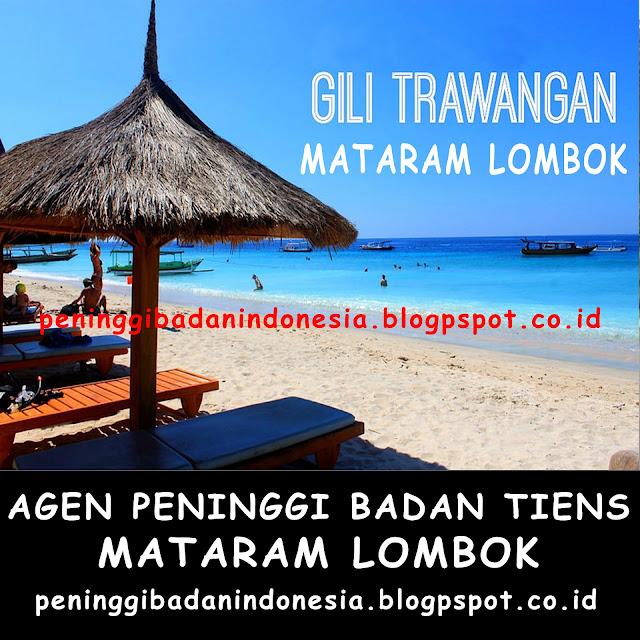 Jual Kalsium Nhcp Peninggi Badan Tiens di Mataram Lombok | WA: 082230576028