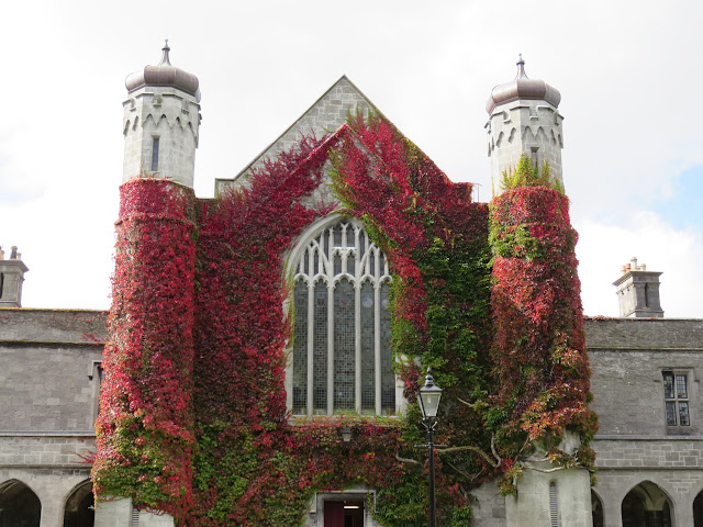 A Walking Tour of NUI Galway - Quadrangle and Red Ivy