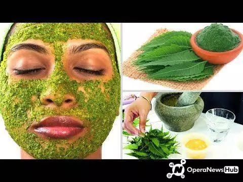 How To Make Your Face Look Younger and Clear With Neem Leaves