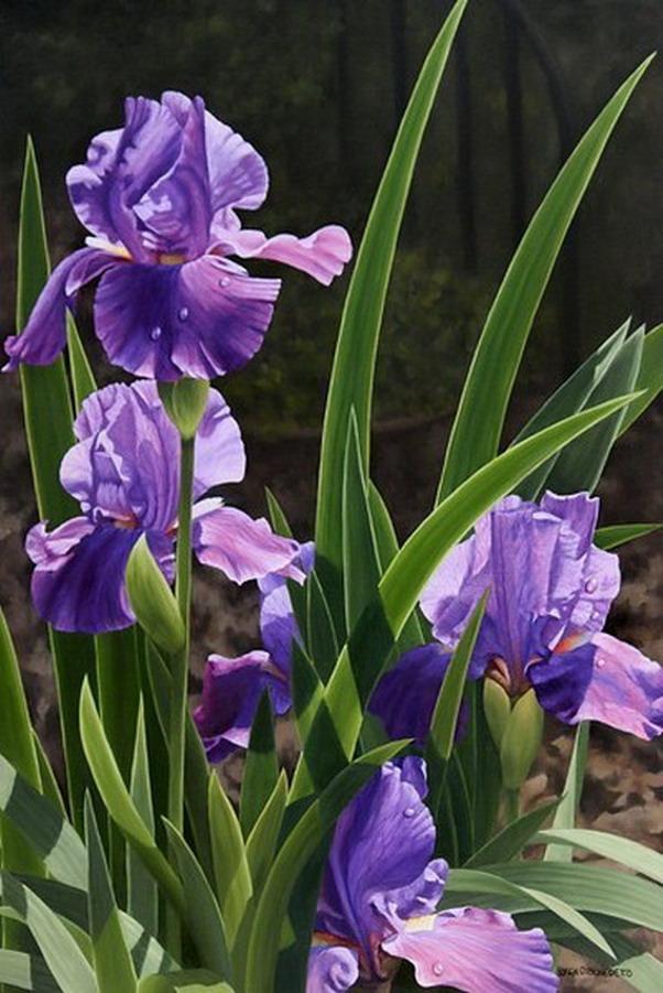 flores grandes cuadros de realismo profundo loren dibenedetto