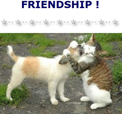 Friendship - click to goto http://www.chezmaya.com/cartesvirtuelles/pourmonami/monami.html