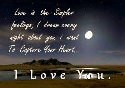 Romantic Good Night Love Quotes:love is the simple feeling, i dream every night about you i want to capture your heart.