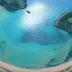 H εκθαμβωτική παραλία της Μεσσηνίας (photos)