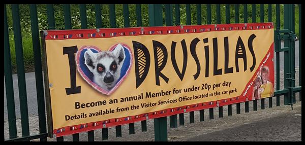 Drusillas Park 2016