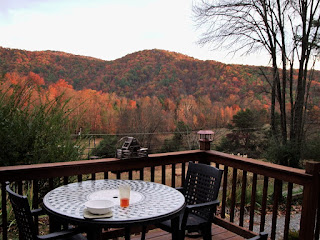 Tennessee Cabin View