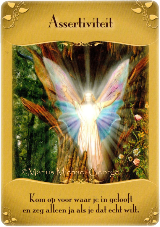 Magical Messages from the Fairies Oracle Cards by Doreen Virtue Assertiveness