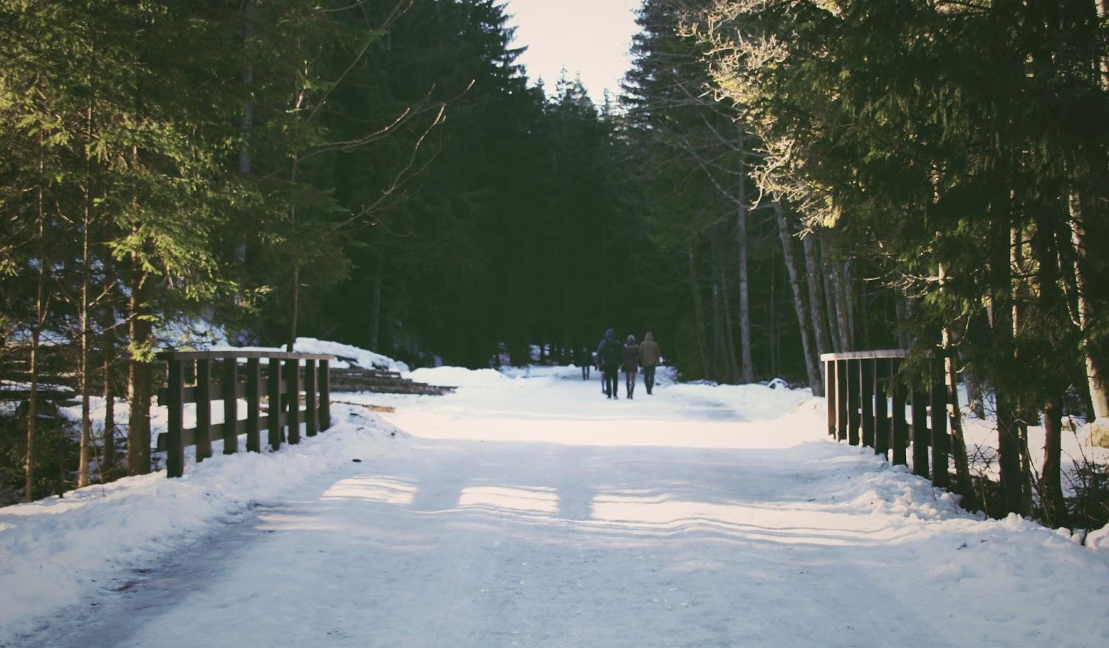 WEEKENDOWO | Zakopane - Dolina Chochołowska