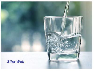 ماهي كمية المياه التي تحتاجها كل يوم ولماذا ؟
