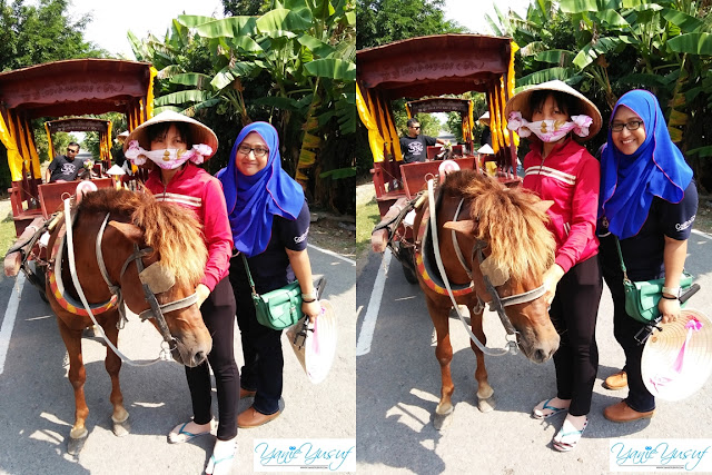 Vietnam, kereta kuda