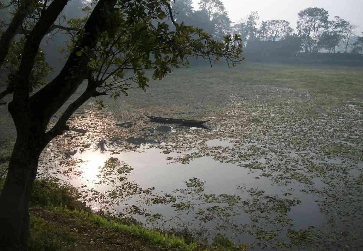 Wetlands in Majuli