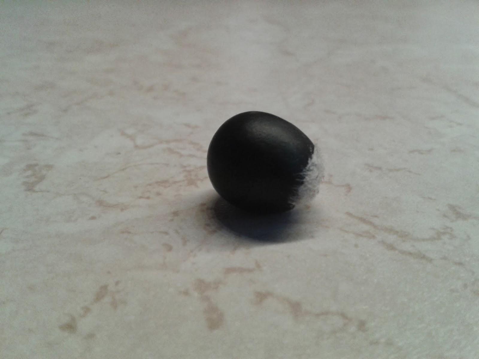 Drzewo mydlane, orzechy mydlane - owoce Sapindus mukorossi, jak wysiać? Co to jest drzewo mydlane? Orzechy piorące i czarna kulka wewnątrz, nasiona drzewa mydlanego - uprawa, hodowla w domu, pielęgnacja i siew.
