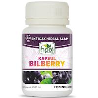 Bilberry HPAI - www.infojagakesehatan.blogspot.co.id - isman
