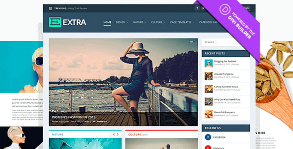 Extra v2.0.64 – Responsive Ultimate Magazine WordPress Theme - Download For Free