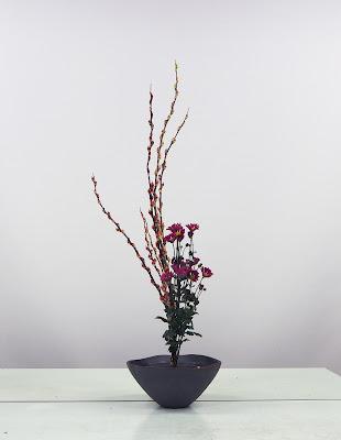 池坊生花正風体いけばな。ネコヤナギと菊。