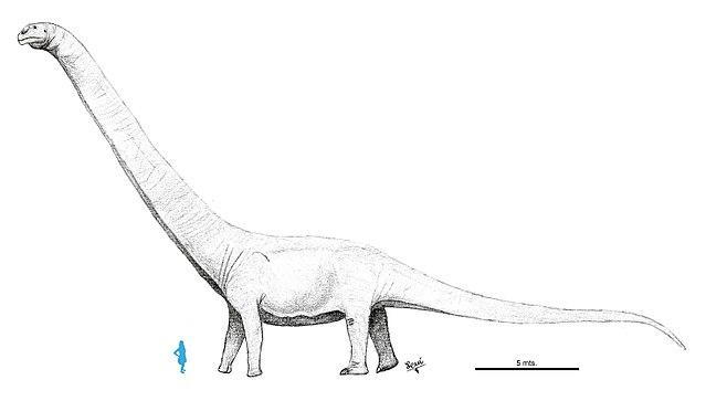 Patagotitan mayorum dinosaurus terbesar