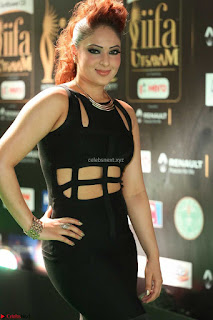 Nikesha Patel in Beautiful Figure Hugging Black Dress  at IIFA Utsavam Awards 2017  Day 2 at