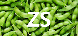 CME CBOT: ZS Soybean Futures Trading Strategy Today - Soybean price Long-term forecast and trade ideas