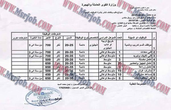 القوى العاملة تعلن عن وظائف للشباب بفنادق الغردقة والتقديم باليد 7 / 9 / 2017