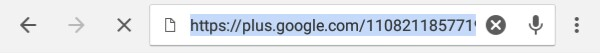 google-plus-url-screenshot