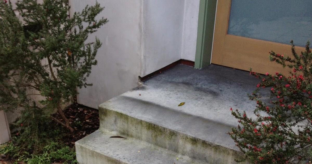 The Shingled House Spray Painted Sidewalk Street Numbers