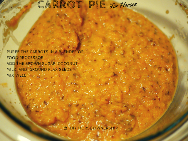 DIY Carrot Pie for Horses Recipe