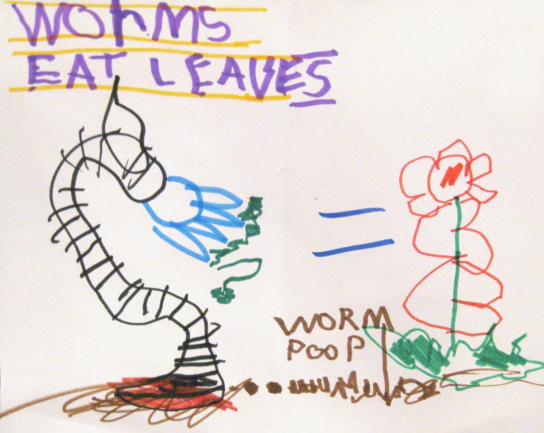 Beaux S Homeschool Page Earthworms