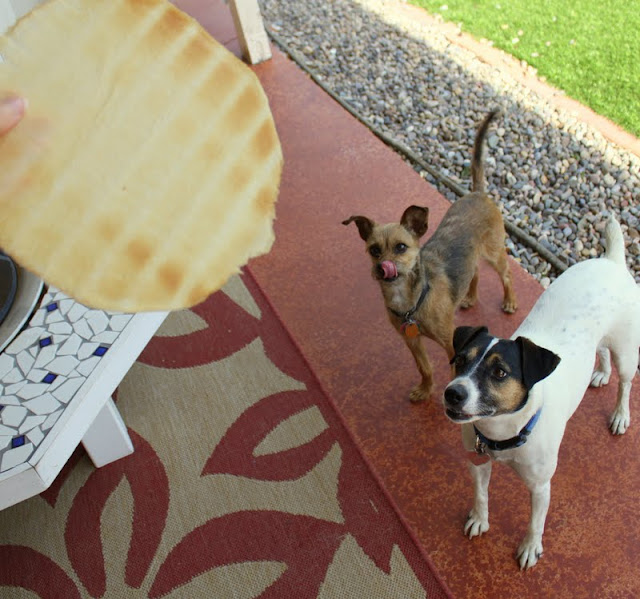 Can dogs eat crepes?