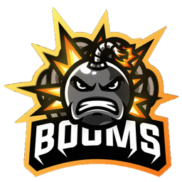 ikon booms