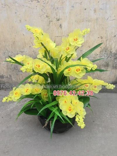 Hoa da pha le tai pho Hang Ma