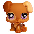 Littlest Pet Shop Special Puppy (#760) Pet