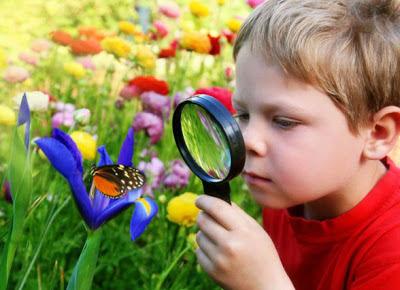 Картинки по запросу мир природы картинки для детей