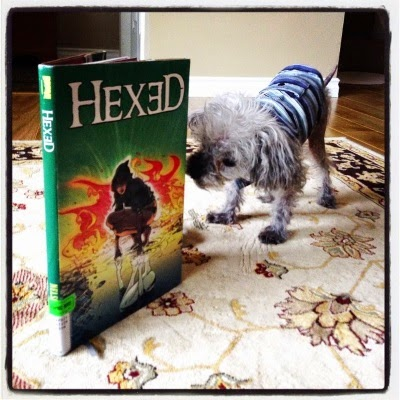 Murchie hunches over to sniff a hardcover copy of Hexed propped open so it can stand up. He wears a blue striped tank top. The book's cover features a pale-skinned woman crouching before a reflective pool, a burst of fire directly behind her.