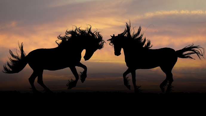 Wallpaper: Horse Silhouettes