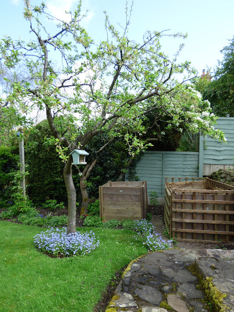 Plum Tree Compost bins