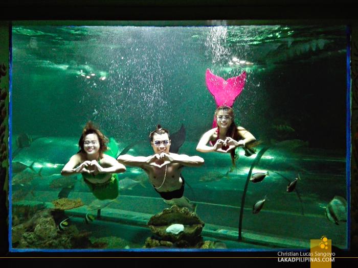 Crown Regency Resort & Convention Center Boracay Oceanarium