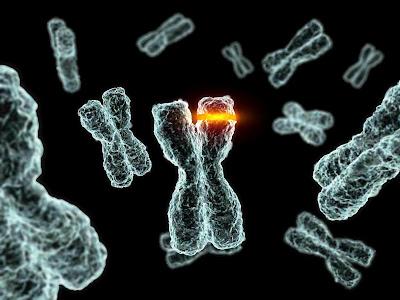 Mengapa DNA selalu berubah?