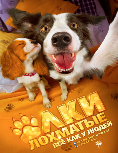 Ver Paws Bones and Rock And Roll (2016) Online