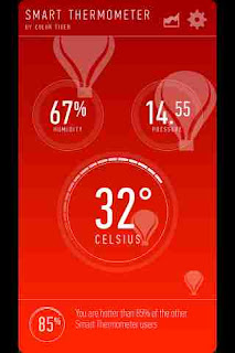 Smart Display Thermometer