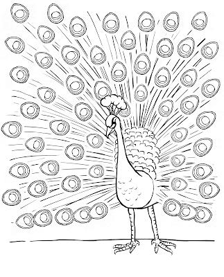 Gambar Mewarnai Burung Merak - 2
