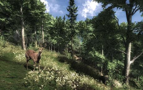 The Hunter - Image du Jeu