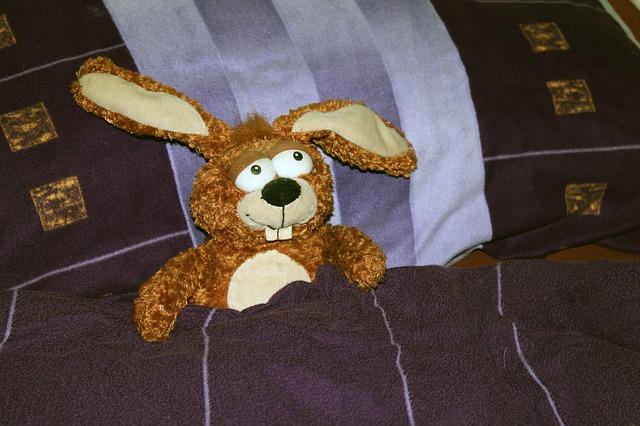 Kuschelhase liegt im Bett und ist halb zugedeckt