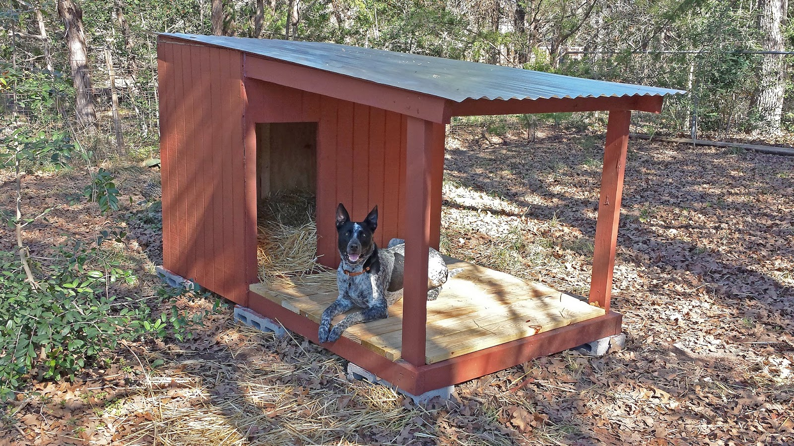 Diy Attempt Country Dog House With Porch