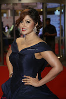 Payal Ghosh aka Harika in Dark Blue Deep Neck Sleeveless Gown at 64th Jio Filmfare Awards South 2017 ~  Exclusive 123.JPG